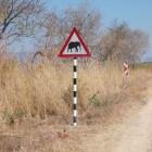 Verkeer en verkeersregels Zuid-Afrika