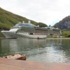 Diverse rederijen van cruiseschepen