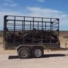 Verkeer - Auto Afmetingen Lading Aanhangwagen