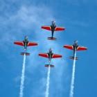 Blusvliegtuig: de brand meester vanuit de lucht